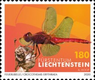 [Insects - Dragonflies, type CAO]
