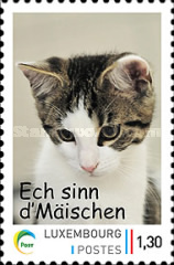 [Domestic Animals - The 10th Anniversary of Personalized Stamps, meng.post.lu, type BTZ]