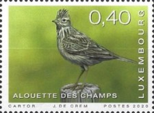 [Rare Birds of Luxembourg, type BZD]
