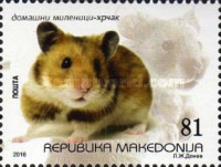 [Domestic Pets - Hamster, type AAL]