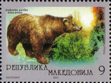 [Environmental Protection - Brown Bear, type JP]