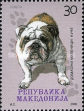 [Pets - Dogs, type PQ]