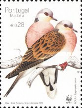 [Birds - Turtle Dove, type HB]