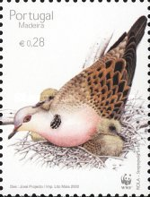[Birds - Turtle Dove, type HD]