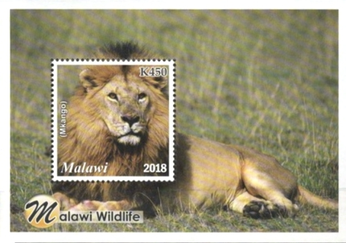 [Malawi Wildlife, type ]