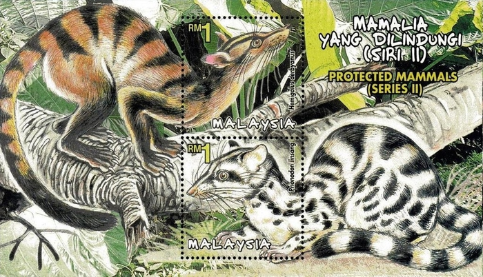 [Protected Mammals of Malaysia, Typ ]