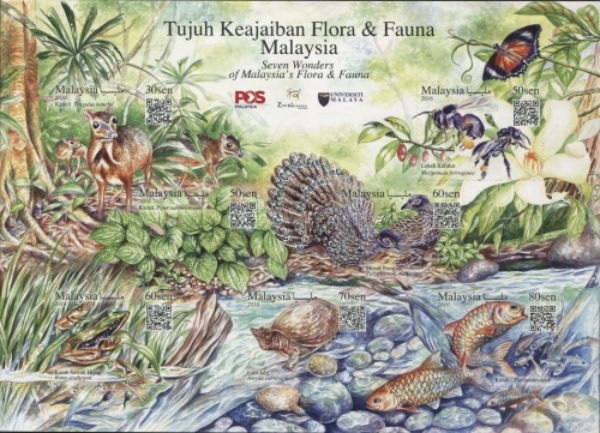 [Seven Wonders of Malaysia's Flora and Fauna, Typ ]