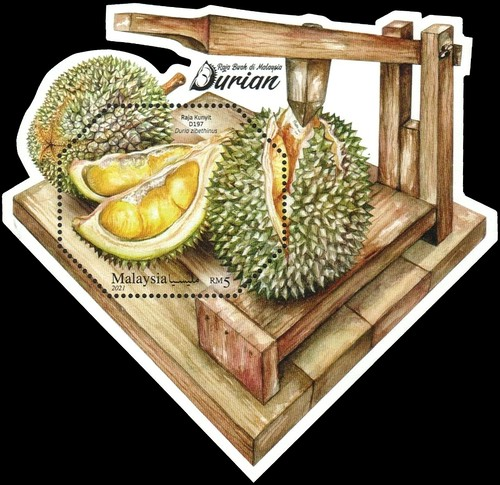 [Durian, King of Fruits, type ]