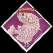 [Chinese New Year - Year of the Dragon - Artefacts and Fish, type ADO]