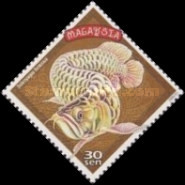 [Chinese New Year - Year of the Dragon - Artefacts and Fish, type ADR]