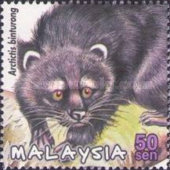 [Protected Mammals of Malaysia, Typ AGX]