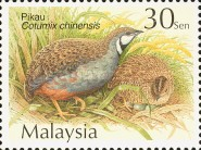 [Quails and Partridges, Typ AJQ]