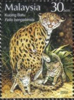 [Stamp Week - Wild and Domesticated Animals, Typ AOM]