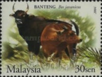 [Wildlife in the Malaysian Forest, Typ ASC]