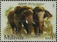 [Wildlife in the Malaysian Forest, Typ ASF]