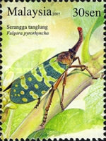 [Insects, Typ BAU]