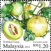 [Malaysian Fruits, type BYS]
