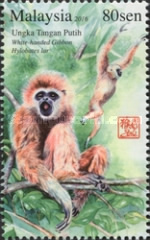 [Primates of Malaysia, Typ CCK]