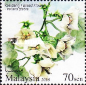 [Scented Flowers, Typ CDA]