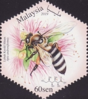 [Honey Bees, Typ CND]