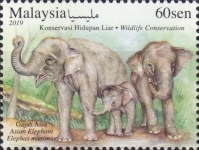 [Wildlife Conservation, Typ CNS]