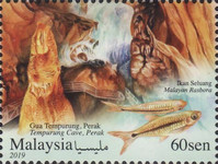 [Caves of Malaysia, type COC]
