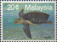 [Marine Life - Sea Turtles, type NT]