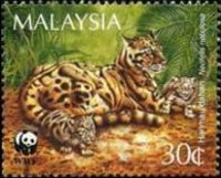 [Endangered Species - Clouded Leopard, Typ RX]