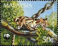 [Endangered Species - Clouded Leopard, Typ RY]