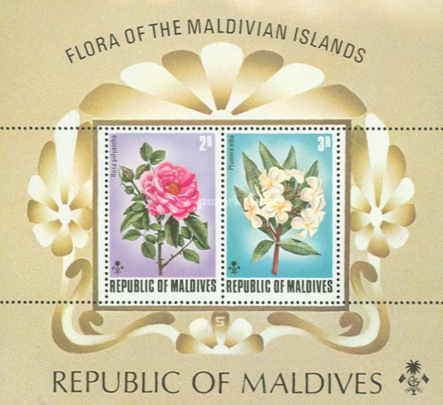 [Flowers of the Maldive Islands, Typ ]
