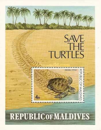 [Turtle Conservation Campaign, Typ ]