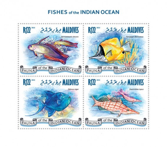 [Marine Life - Fishes of the Indian Ocean, Typ ]