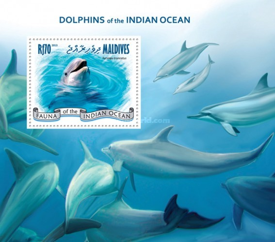 [Marine Life - Dolphins of the Indian Ocean, Typ ]