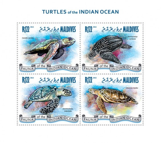 [Fauna - Turtles of the Indian Ocean, Typ ]