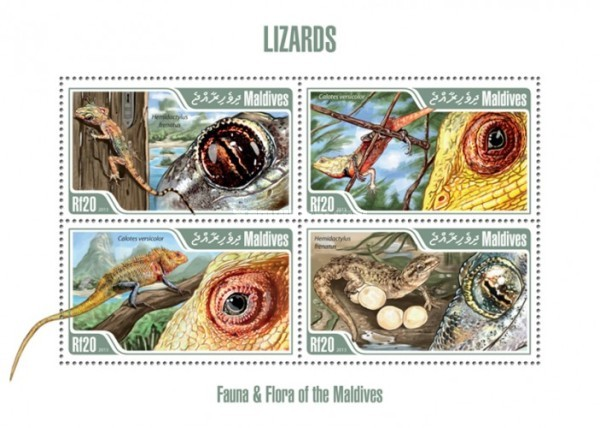 [Fauna - Lizards, Typ ]