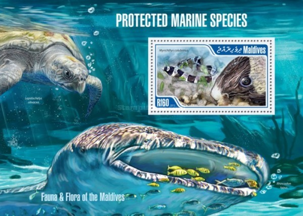 [Protected Marine Species, Typ ]