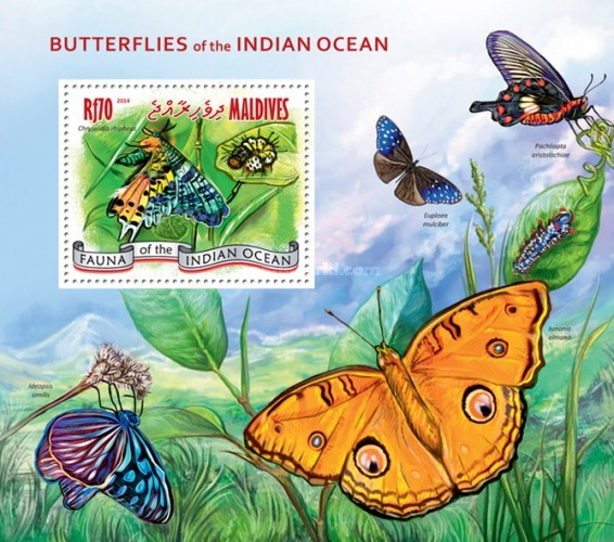 [Insects - Butterflies of the Indian Ocean, Typ ]