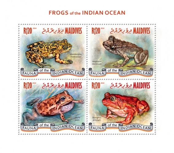 [Fauna - Frogs of the Indian Ocean, type ]