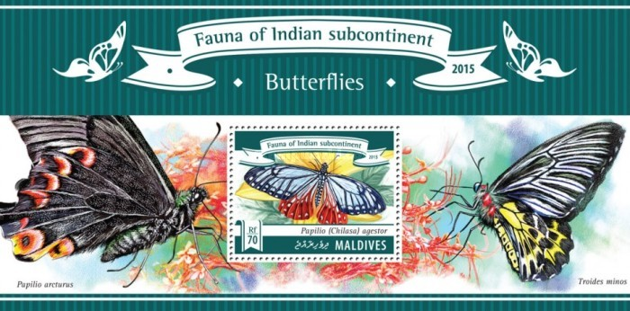 [Fauna of Indian Subcontinent - Butterflies, Typ ]