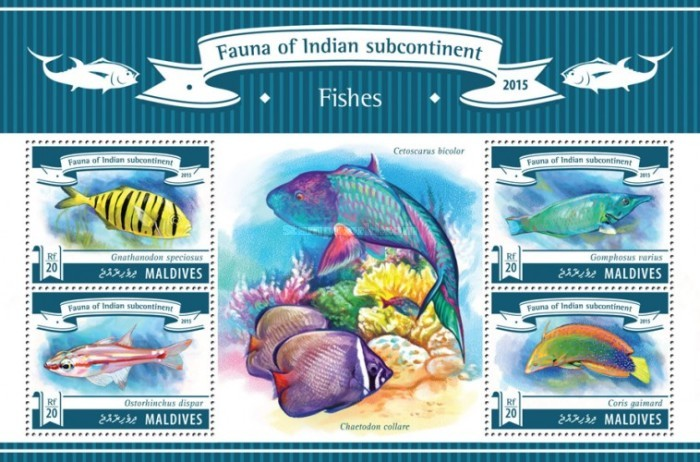 [Fauna of Indian Subcontinent - Fishes, Typ ]