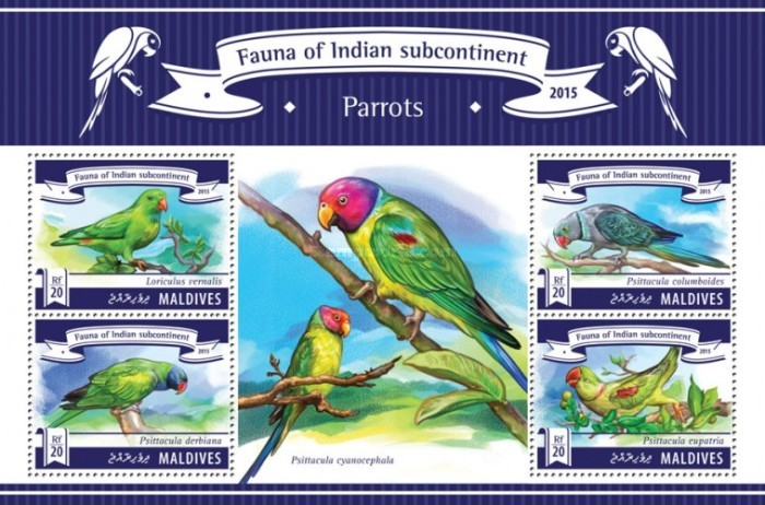 [Fauna of Indian Subcontinent - Parrots, Typ ]