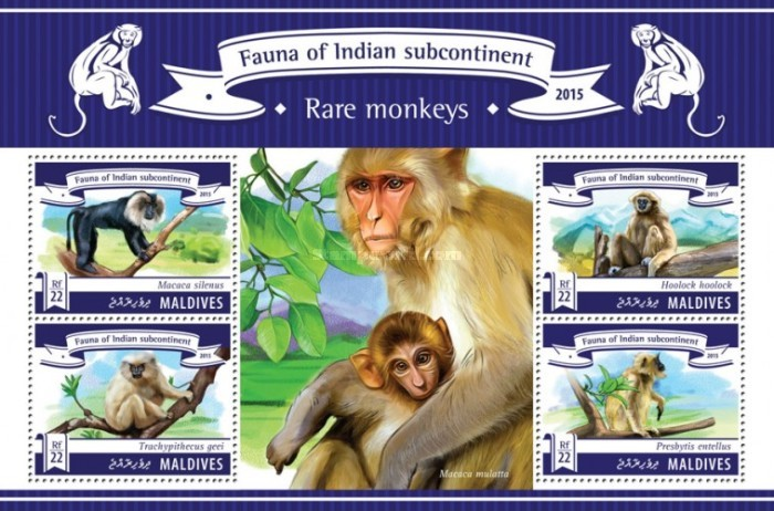 [Fauna of Indian Subcontinent - Rare Monkeys, Typ ]