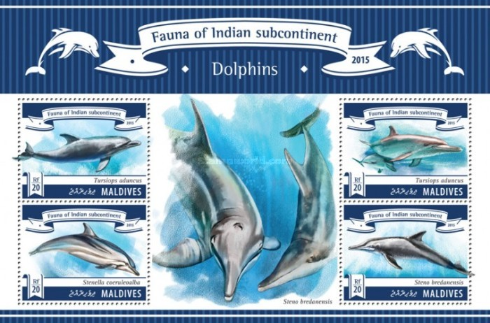 [Fauna of the Indian Subcontinent - Dolphins, type ]