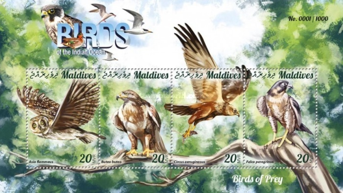 [Birds of the Indian Ocean - Birds of Prey, Typ ]