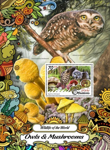 [Fauna and Flora - Owls and Mushrooms, Typ ]