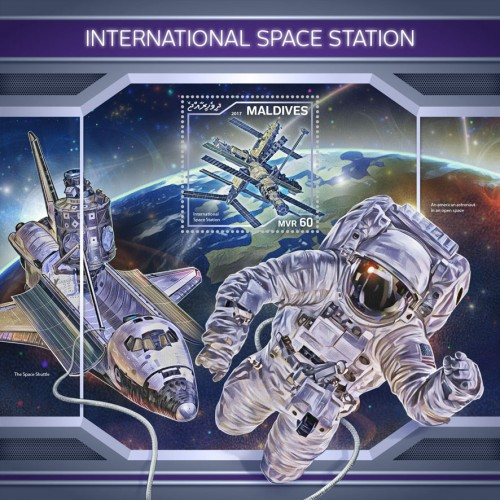 [International Space Station, Typ ]