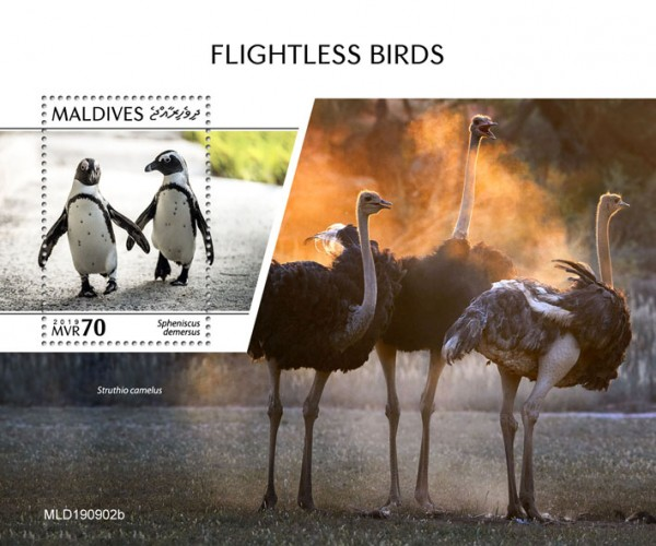 [Flightless Birds, type ]