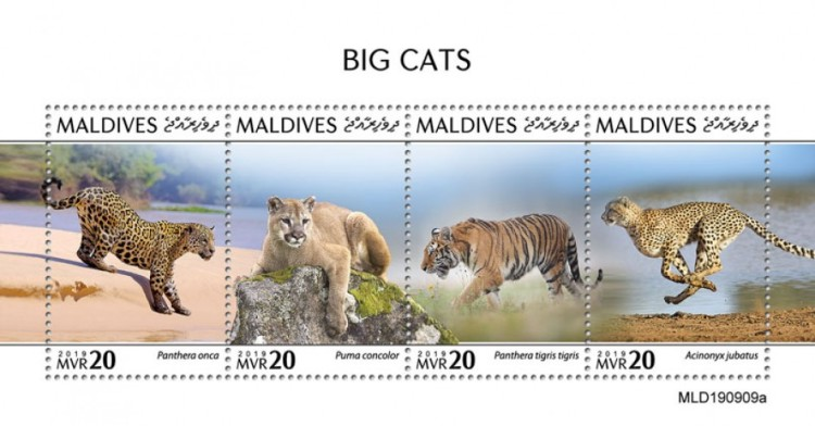 [Fauna - Big Cats, type ]