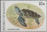 [Turtle Conservation Campaign, Typ AFP]