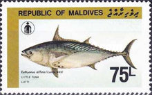 [Fishermen's Day - Species of Tuna, Typ AQF]